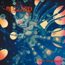 BUZZARD - Sonic Renaissance