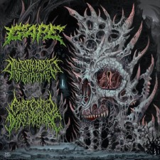 EXISTENTIAL DISSIPATION / GAPE / DISPLEASED DISFIGUREMENT - International Solidification