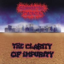 SUMMERTIME DAISIES - The Clarity Of Impurity