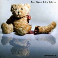 TONY NAIMA & THE BITTERS - Dismember