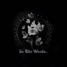 IN THE WOODS - Heart Of The Woods