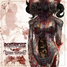 AGATHOCLES / RESTOS HUMANOS - Restos Agathos