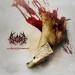 BLOODBATH - The Wacken Carnage