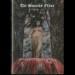 THE SINISTER FLAME - Vi: Black Pilgrimage
