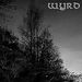WYRD / HAIVE / KEHRA - Split