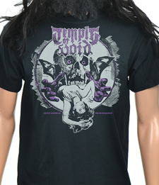 TEMPLE OF VOID - Cryptic Visions